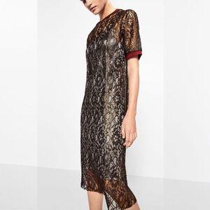 NWT Zara Golden Lace Midi Dress